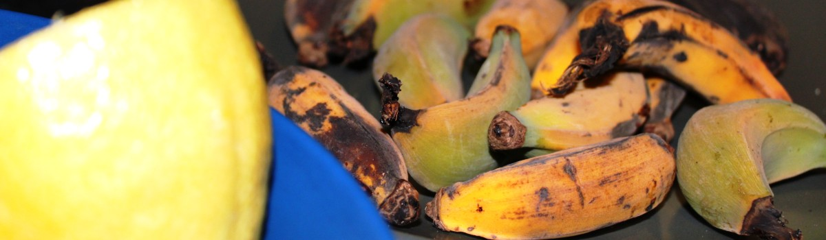 home-grown bananas