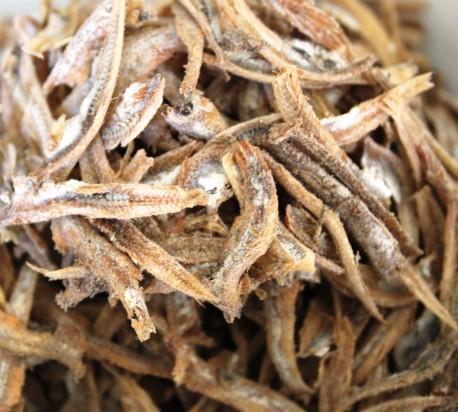 ikan bilis or anchovy