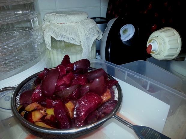 No-cook jam masticating juicer